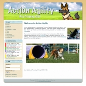 Action Agility Website